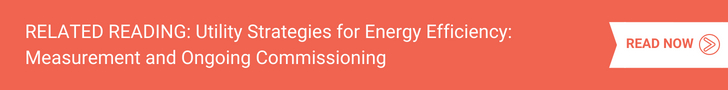 Utility Strategies for Energy Efficiency_ Measurement and Ongoing Commissioning
